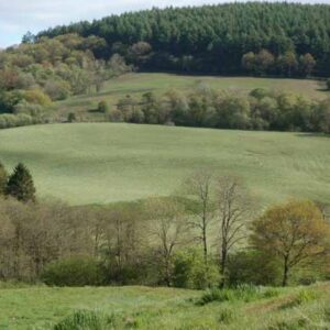 Woods, River and Stunning Countryside at Basel Holiday Cottage in Llandovery, Dogs Welcome