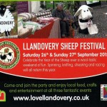 Sheep Festival Llandovery (2)